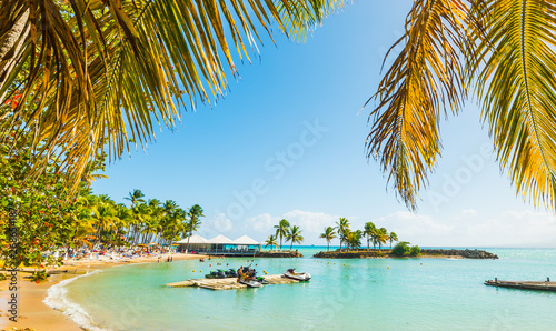 Obraz Palms and colorful shore in Bas du Fort beach - fototapety do salonu