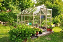 A Garden Center Greenhouse Wit...