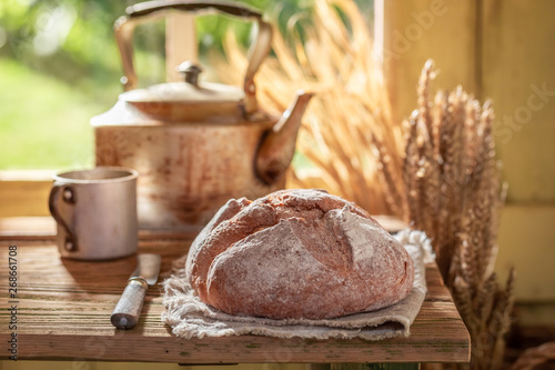 In de dag Brood Fresh and big loaf of bread in spring sunny kitchen