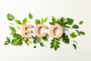 Fototapeta Do gabinetu lekarskiego/szpitala Inscription eco and greenery on light background, space for text. Environmental protection. Agriculture