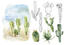 Watercolor And Sketch Desert L...
