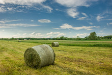 Bales Of Mowed Hay In The Field And Clouds In The Sky