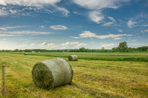 Photo Bales of mowed hay in the field and clouds in the sky