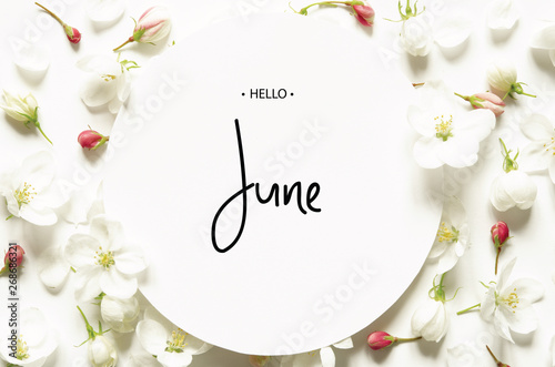 Wall Murals Floral Inscription Hello June. Summer fresh flowers. Top view. - image
