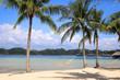 Two palm trees with a hammock on the beach - Gaya Island Malaysia Asia