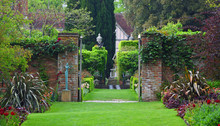 Garden Gate With Plants And St...