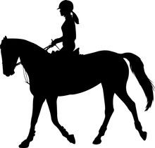 High Quality Silhouette Of Young Female Riding Elegant Horse