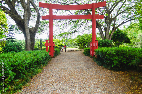 Obraz beautiful torii gate in Japanese garden contracting with the green of nature - fototapety do salonu