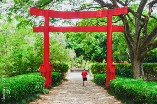 beautiful torii gate in Japanese garden contracting with the green of nature