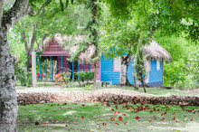 Typical Dominican Country House Surrounded By Vegetation With Beautiful Green Tones, Painted Blue And Covered With Palm Tree