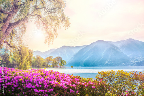 Obraz na plátně Beautiful view of the lake surrounded by mountains from the botanical flower gar