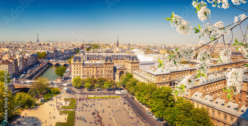 Aerial view of Paris at springtime, France Canvas Print