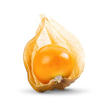 Cape Gooseberry Isolated On White Background. Full Depth Of Field