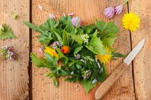 Wildkräuter Salat Wildkräute...