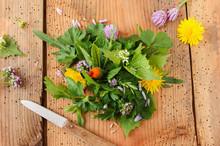 Wildkräutersalat Salat Wildkräuter Essbare Blüten Blüte