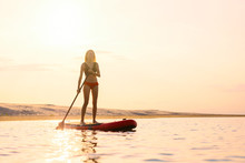 Silhouette Of Woman Standing On Paddle Board