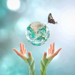 Fototapeta Do szkoły Earth day and go green concept with big green planet on people's hand with tree leaves : Elements of this image furnished by NASA...