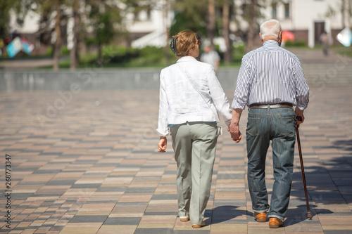 Fotografie, Obraz  Senior adults walking in a park holding hands