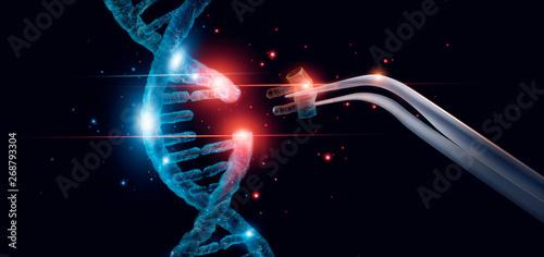 Fotografia  Abstract luminous DNA molecule