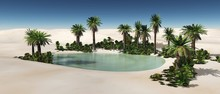 Oasis In The Desert Of Sand, P...