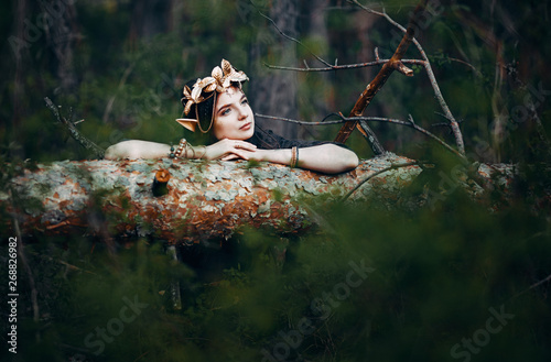 Fotografie, Obraz  beautiful elf woman fabulous, fairy forest, famtasy young woman with long ears,