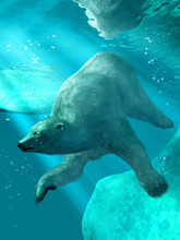 A Polar Bear Swims Under The Arctic Ice.  This Great Predator's Long Fur Flows With The Water As It Searches For An Animal To Eat. 3D Rendering