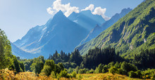 Morning In The Mountains. Scenic Valley In The Caucasus Mountains, Dombay. Summer Greens And Snow-capped Peaks.