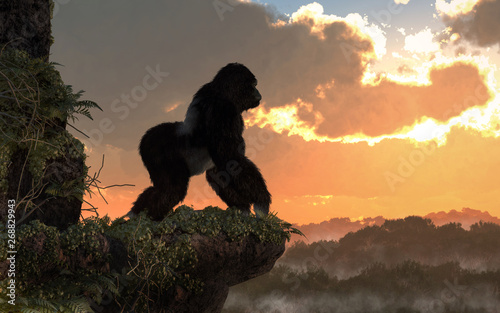 A silverback gorilla stands on a rocky, vegetation covered ledge overlooking a jungle basin Wallpaper Mural