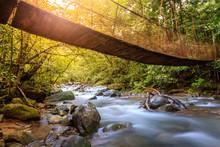 Forest Creek In Rincon De La Vieja National Park In Costa Rica