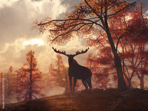 As the sun sets on a late autumn day, a moose stands on a grassy hill Wallpaper Mural