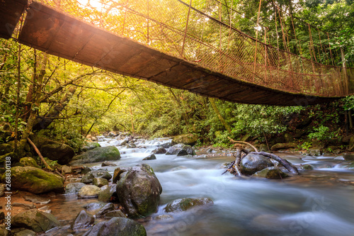 Canvas Prints Forest river Forest creek in Rincon de la Vieja National Park in Costa Rica