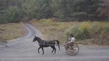 Horse Drawn Cart In Hail On Di...