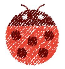 Ladybird (ladybug) Illustratio...