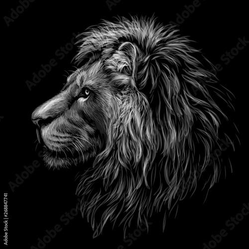 Black and white, graphic portrait of a lion's head profile on a black background.