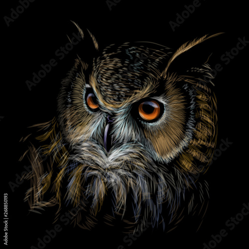 Poster Owls cartoon Long-eared Owl. Color graphic hand-drawn portrait of an owl on a black background.