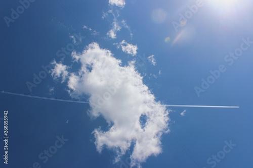 Obraz na plátne Processed with VSCO with g1 preset