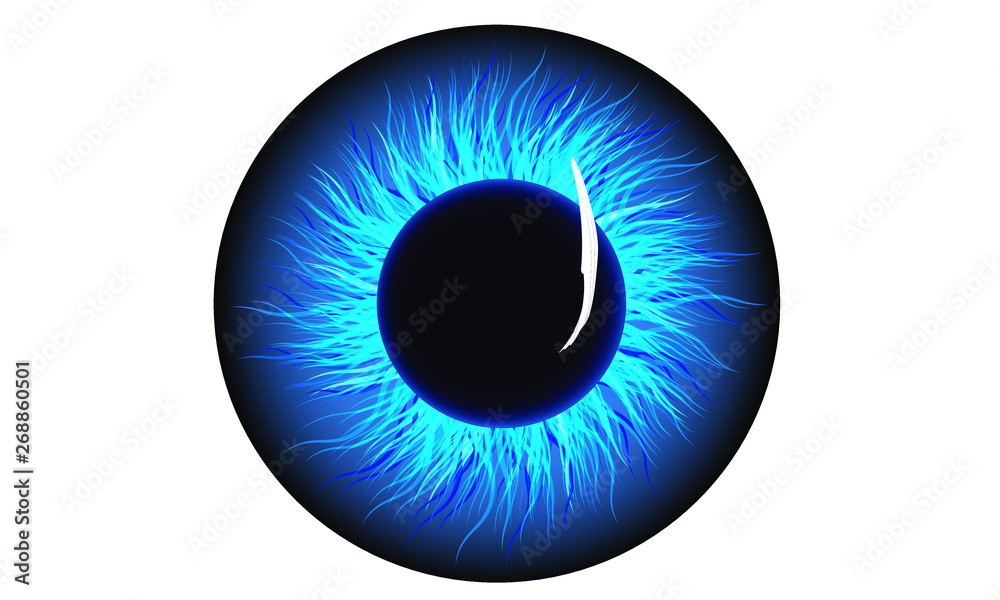 Fototapeta blue iris eye ball pupil icon, night king walker eye