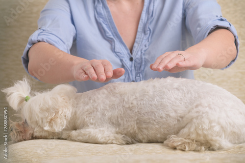 Photo  Woman practicing reiki therapy