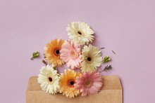 Composition Of Pink White And Orange Gerberas Decorating Envelope On A Purple Background.