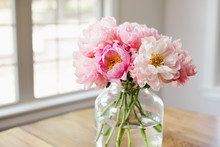 Bouquet Of Pink Peonies In A Glass Vase In A Light Filled Room