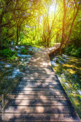 Printed kitchen splashbacks Road in forest Krka national park wooden pathway in the deep green forest. Colorful summer scene of Krka National Park, Croatia, Europe. Wooden pathway trough the dense forest near Krka national park waterfalls.