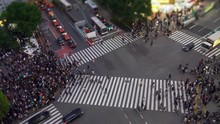 Shibuya Crossing ( 4K UHD Time-lapse ), One Of The Busiest Crosswalks In The World. Pedestrians Crosswalk At Shibuya District. Tokyo, Japan
