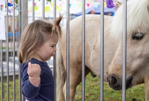 Fototapeta  Baby. Girl. Looking. Cute. Pony. Zoo