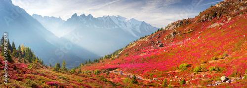 Foto auf Gartenposter Ziegel Red autumn Chamonix in the Alps
