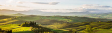Hills And Fields Of Val D'Orcia In Tuscany At Sunrise