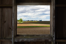 Looking Through The Old Barn W...
