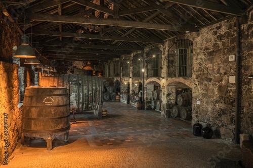 Obraz na plátně Porto