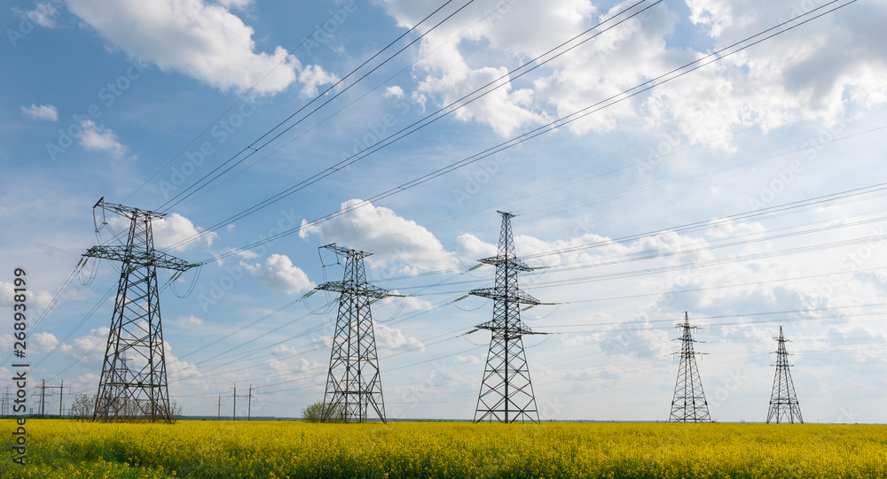 Fototapety, obrazy: Power lines and high-voltage lines against the backdrop of blooming oilseed rape on a summer day.