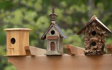 Empty Bird Houses Need Visitors