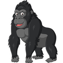 Cartoon Funny Gorilla On White...